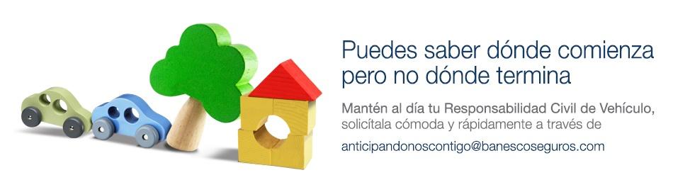 Banner-Web-Banesco-Seguros-RCV
