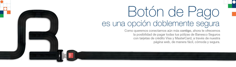 Banner Web BS Boton de Pago